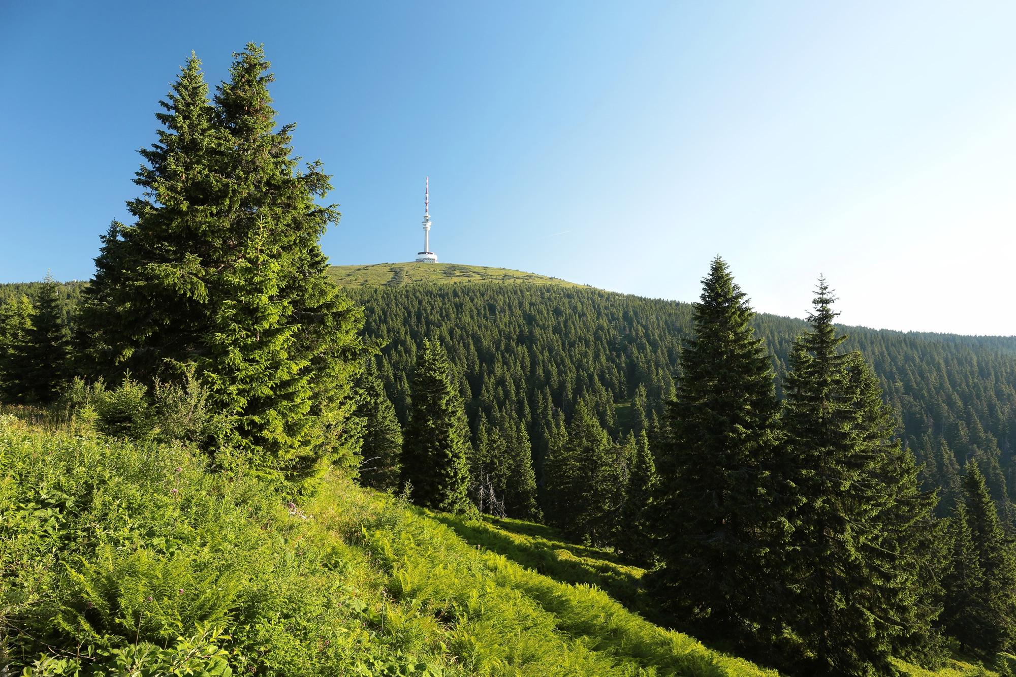 Nejvyšší hora Praděd